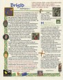 Our St. Brigid Scroll